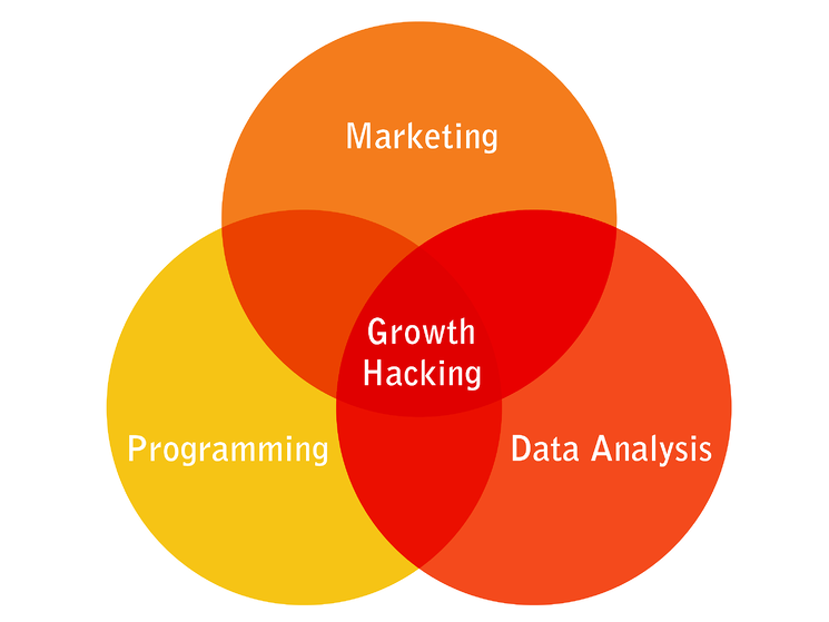 Growth Hacking-1.png
