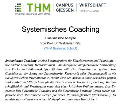 systemsiches-coaching-kritische-analyse